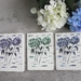 Set of 3 Fine Art Hydrangea Greeting Cards