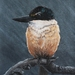 (Print) Kingfisher painting on canvas paper