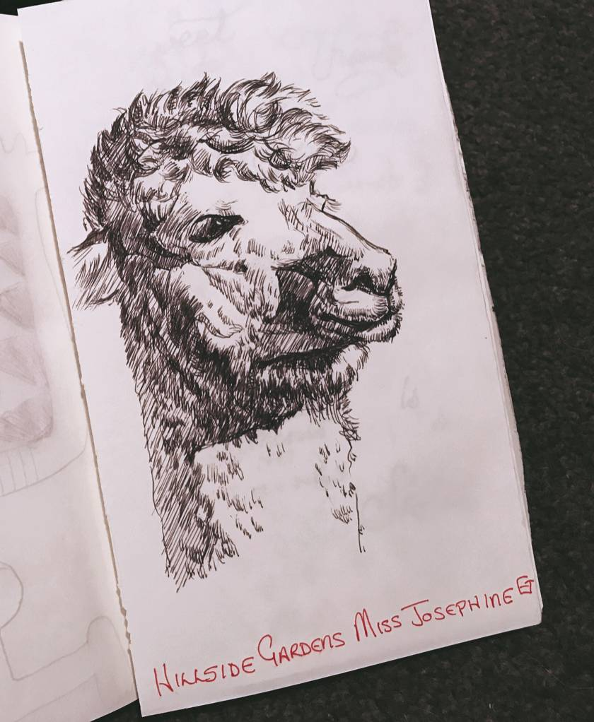 Black and white original drawing custom hand drawing animal portrait sketch unique wall art felt