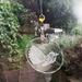 Piwakawaka - Fantail Crystal Suncatcher