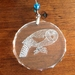 Set of six NZ bird crystal suncatchers for the price of five!