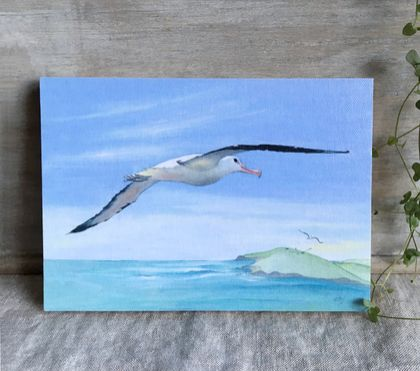 Albatross - Giclee print mounted on wood