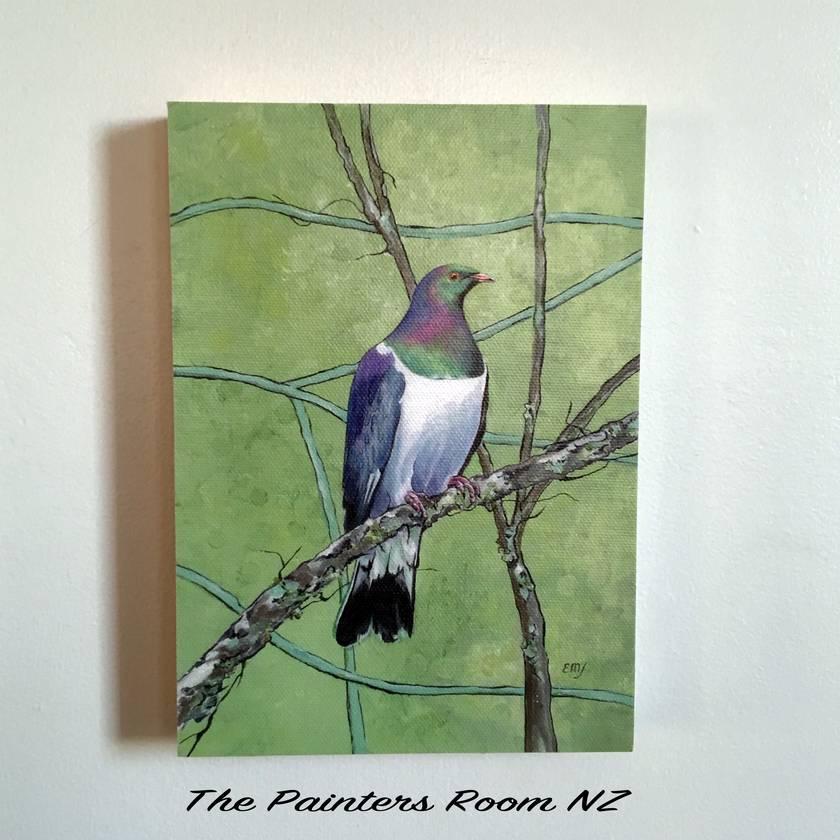 NZ Wood Pigeon (Kereru) - Giclee print mounted on wood