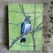 NZ Wood Pigeon (Kereru) - Giclee print mounted on wood