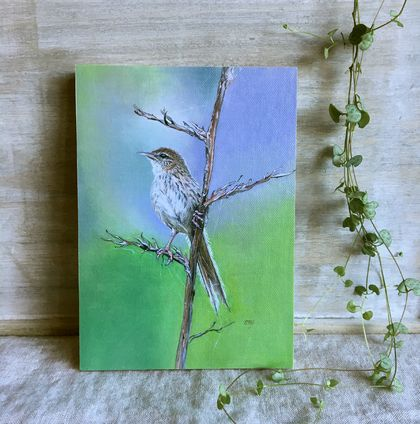 NZ Fernbird ( Kōtātā ) - Giclee print mounted on wood