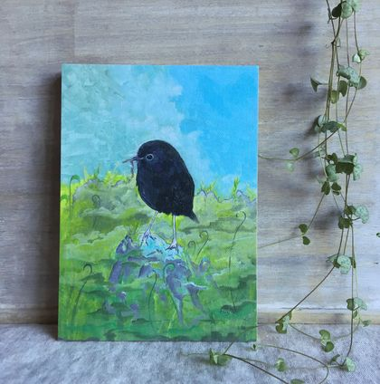 NZ Black Robin / Chatham Is - Giclee print mounted on wood