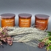 Limited Edition Festive Trio - Soy Candle 250gm