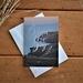 Christmas Card, New Zealand Coastal Photography