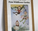 Grow Your Own PIXIE Wildflower Garden