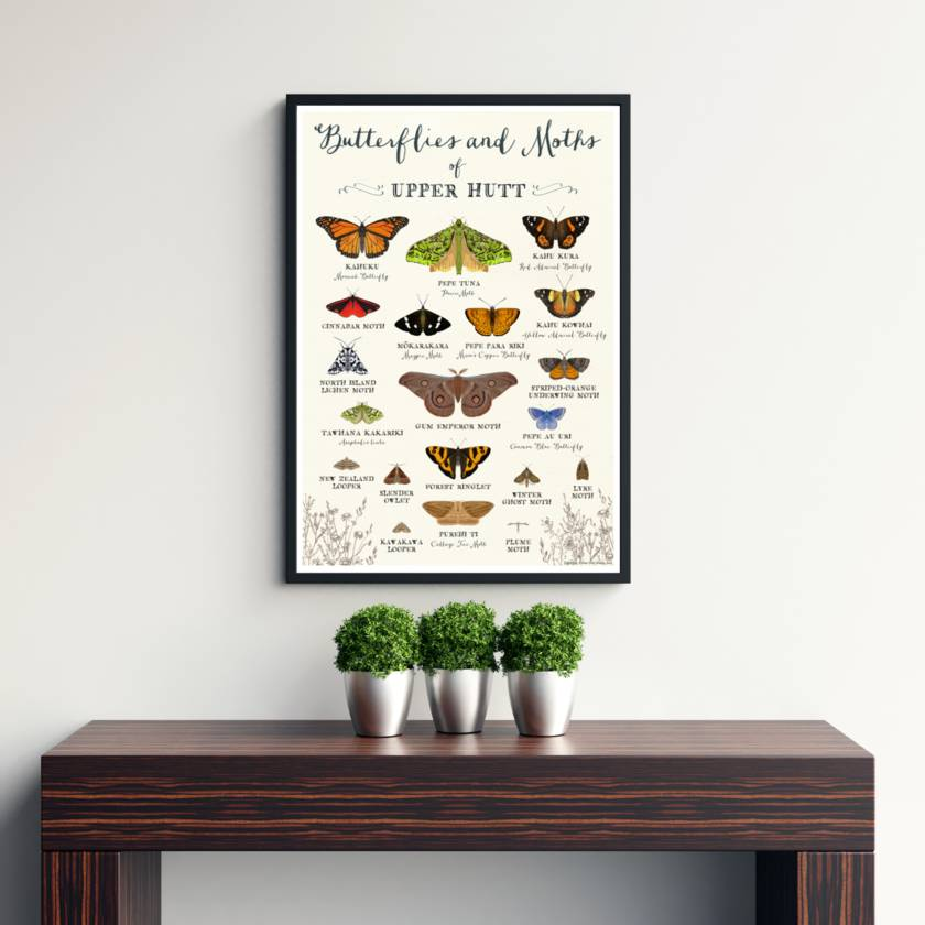 Butterflies of Upper Hutt Unframed