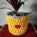 Upcycled pot plant cozie sunshine