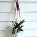 Natural and tearose  plant hanger