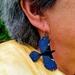 Hand-painted Tui Earrings