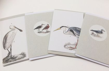 Gorgeous Seabird Gift Tags