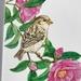 Sparrow&Camelia Greeting Card