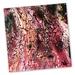 Acrylic Painted Tile