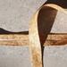 Mustard acanthus print bias binding - 25mm x 5m