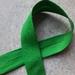 Green bias binding 18mm x 5m