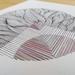 Anatomy of Lines #3