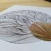 Anatomy of Lines #8