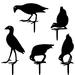 Yoga Pukekos Metal Bang'n Bird