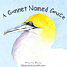A Gannet Named Grace