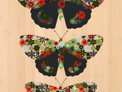 Red Admiral Butterfly (Kahukura) Print on Bamboo Veneer
