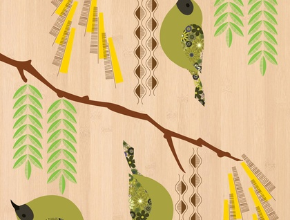 Bellbird (Korimako) on Kowhai - Native NZ Bird Art Print on bamboo veneer