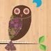 Morepork Owl (Ruru) Print on Bamboo Veneer