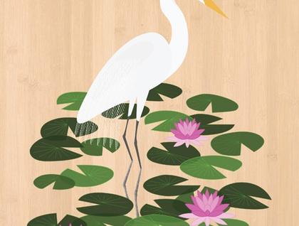 White Heron (Kotuku) - Native NZ Bird Art Print on bamboo veneer