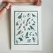 Original Linocut - Forest and Bird