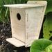 Bird Nesting Box 002