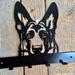Shepherd Key/Coat Hanger 6 Hooks NZ Made