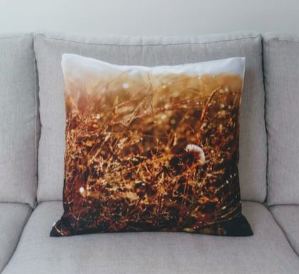 Morning dew grasses cushion