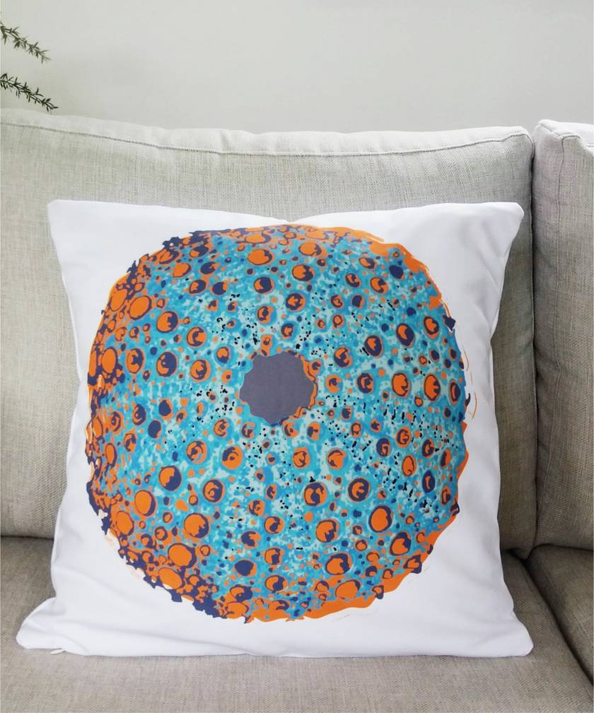 Sea urchin kina shell sofa pillow - Ready to ship!