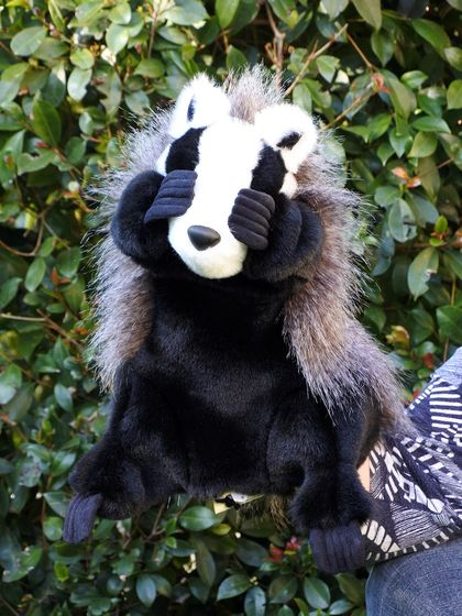 'Boris' - our really cool badger puppet!