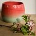small watermelon bowl