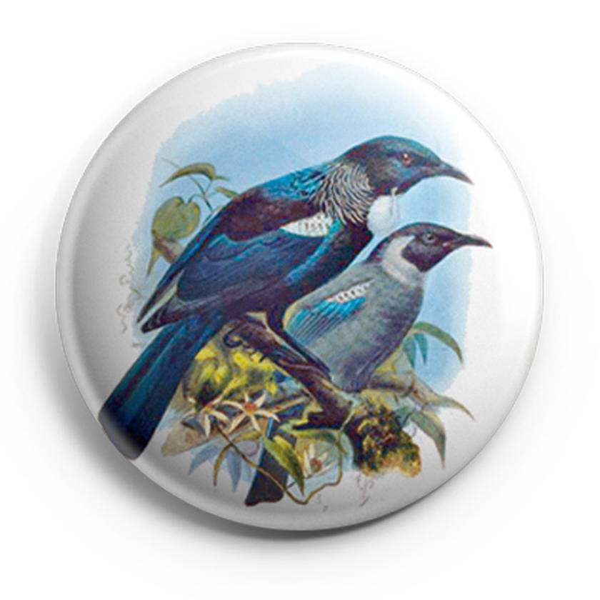 buller's birds of new zealand Magnets, featuring Penguin, Owl & Tui