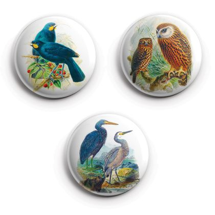 buller's birds of new zealand Magnets, featuring Heron, Huia & Ruru