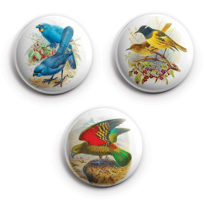 buller's birds of new zealand Magnets, featuring Hihi, Kea, Kokako