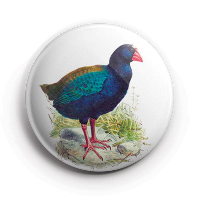 Mini Button Magnets - Buller's Birds. pīwakawaka,Takahē & tīeke