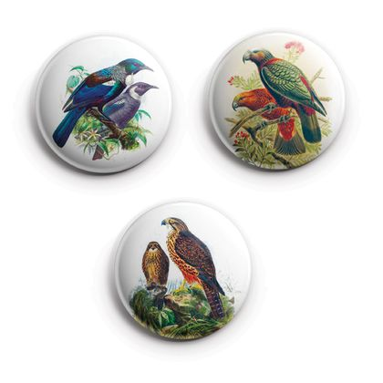 Mini Button Magnets - Buller's Birds kākā, kārearea,tūī