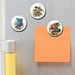Mini Button Magnets - Buller's Birds - Hihi, kea, Kokako