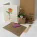 Mae card with seeded heart and plating kit