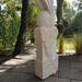 Nautilus in coral stone sculpture